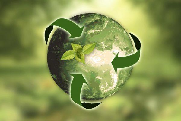 duurzaam vloeren duurzame